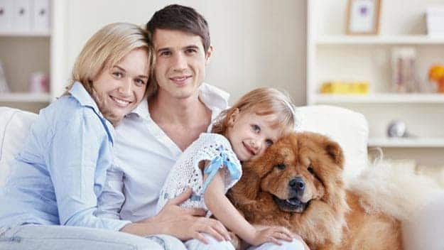 Wills & Trusts dog-young-family Direct Wills South Acton